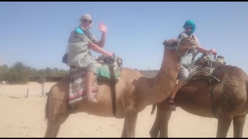 Letoile du Djerba. Прогулка на верблюдах в Сахаре