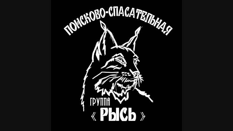 ПСГ Рысь, прямой эфир на ННТВ 23.10.18 (2)
