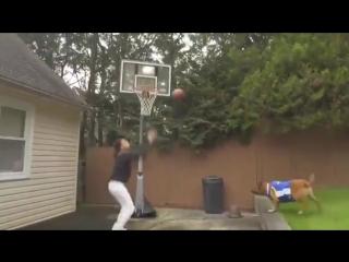 Всегда приятно сыграть в баскетбол с лучшим другом
