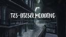 The Elder Scrolls IV: Oblivion - Ретекстур Скинграда от TES-Diesel
