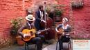 Showarama Gypsy Jazz - Shine