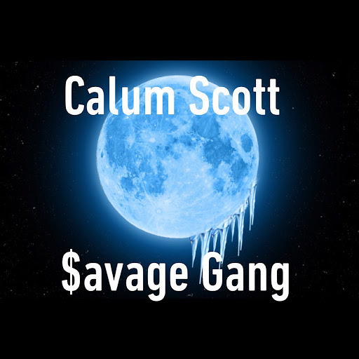 Calum Scott album $avage Gang