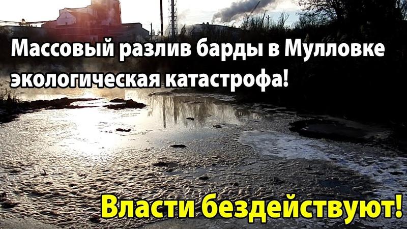 Массовый разлив барды в Мулловке экологическая катастрофа. Власти бездействуют!