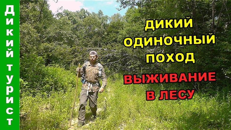 ДИКИЙ ОДИНОЧНЫЙ ПОХОД. Выживаю в лесу - варю крапиву и грибы, собираю подножный корм