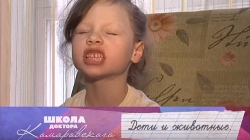 Дети и животные Школа доктора Комаровского