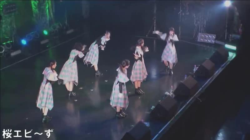 Sakura Ebi's 02 01 2019