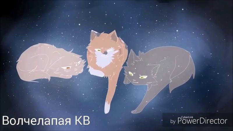 CopycatКленовница и Яблочник (заказ)