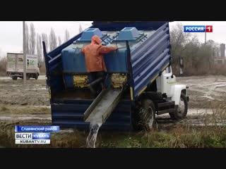 47 тонн мальков белых амуров и толстолобиков выпустили лиманы Азовского моря