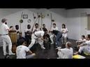 Tr Onça Branca Marrom e alunos e Curujito CAMARA