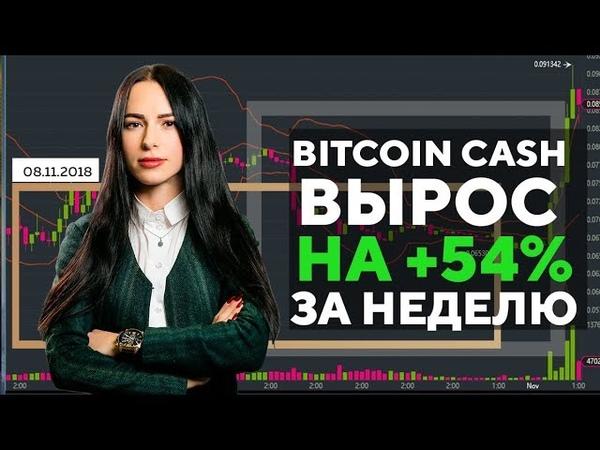 🔥Bitcoin Cash (Биткоин Кэш) вырос на 54% за неделю - Новости криптовалют 08.11.2018