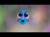 Baby Dory Cuteness Overload Finding Dory