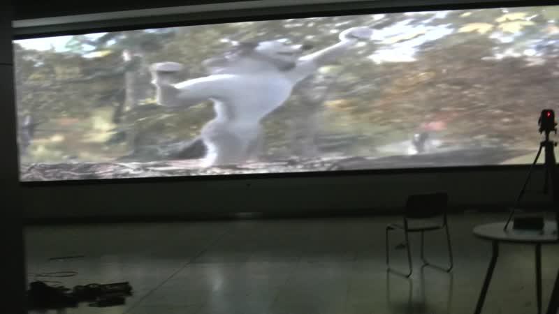4 канальный проекционный Fusion большой экран