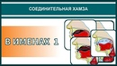 Айман Сувейд. 3. Соединительная хамза: В ИМЕНАХ 1 (с субтитрами на русском)