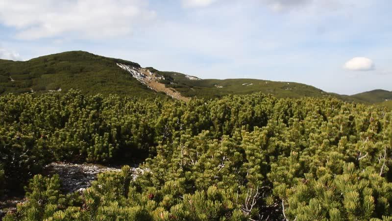 Черногория Дурмитор Панорама с вершины г Crvena greda 2164 м