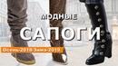 Модные сапоги тренды осень-зима 2018-2019 🔴 Обзор тенденции в обуви