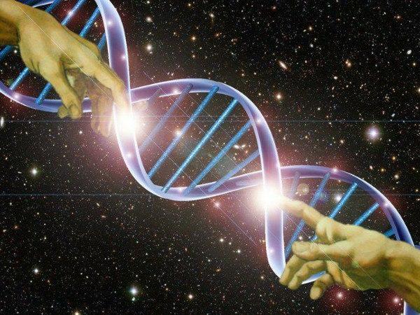 В ДНК человека обнаружили 145 «чужеродных» гена.