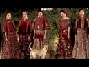 Rohit Bal Fashion Show A Street Dog Enters Fashion Show Steals The Limelight