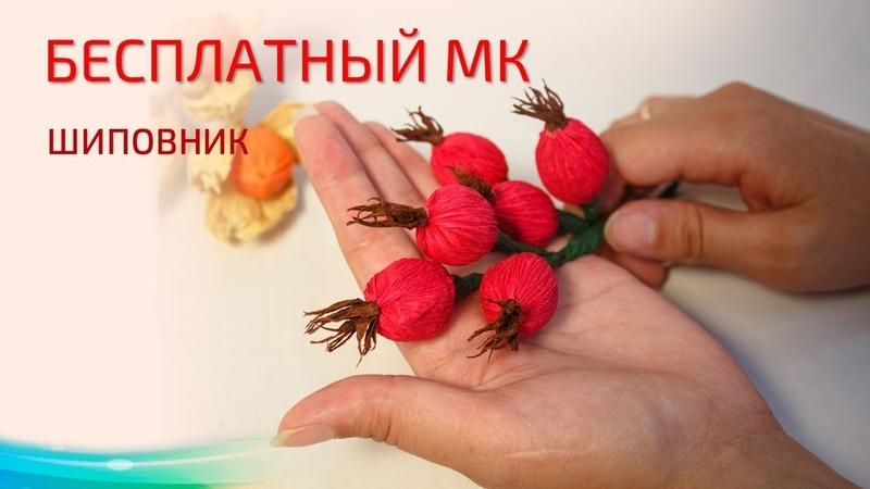 Бесплатный мастер класс Шиповник свит дизайн Мастер Наталья Дроздова