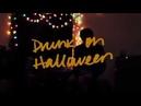 Wallows - Drunk on Halloween (Lyric Video)