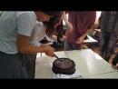 Молодожёны режут торт