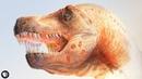 Dinosaur Parasites