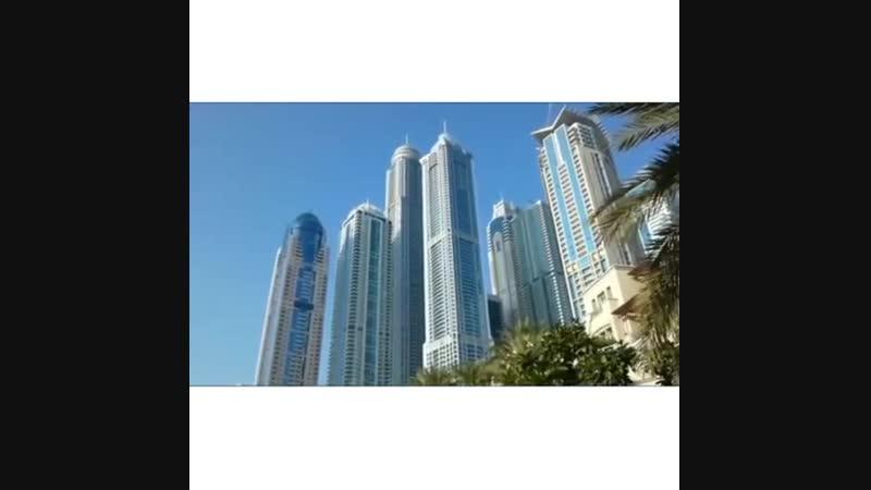 🌴 Круиз по Персидскому заливу в Оман из Дубая 🌴📹 ⠀ ° Вылет из Москвы 22 февраля Свободный день в Дубае ⠀ ° Отправление из Д