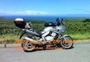 2009 Honda CBF 1000 Long Term Review