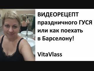 Жарим Гуся ! Вита Власс- несгибаемый видеоблогер, преподаватель английского , поэт и философ.