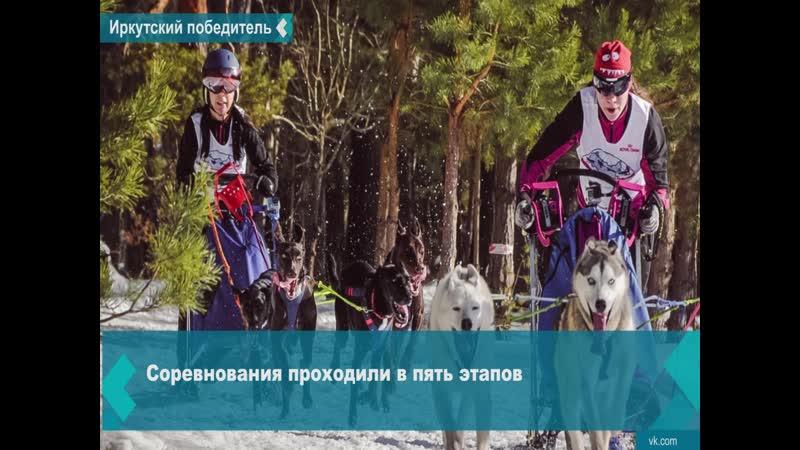 Иркутянин Роман Константинов занял первое место на Кубке России по ездовому спорту