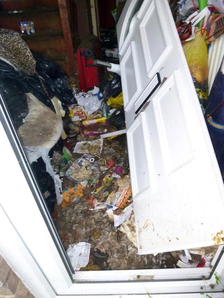 Одевайте противогаз, выезжаем на экскурссию в квартиру сумасшедшей кошатницы В Великобритании благодаря усилиям соседей и волонтёров через суд был получен судебный запрет для 49-летней женщины –