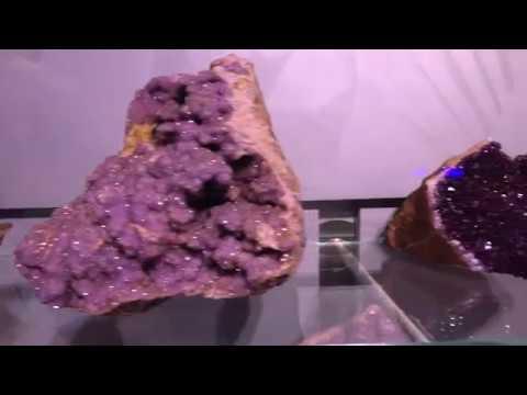 В геологических залах МВЦ КФ АО Апатит