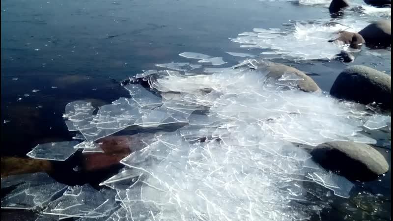 дрейф льда