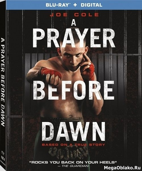 Бои без правил / A Prayer Before Dawn (2017/BDRip/HDRip)