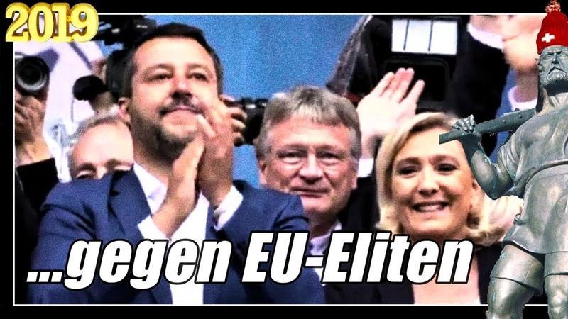 EU Wahlen   Salvini Freunde gegen EU Eliten   Jörg Meuthen AfD