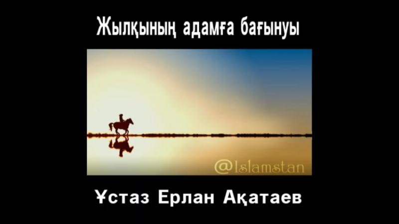 ✔Жылқының адамға бағынуы Ұстаз Ерлан Ақатаев