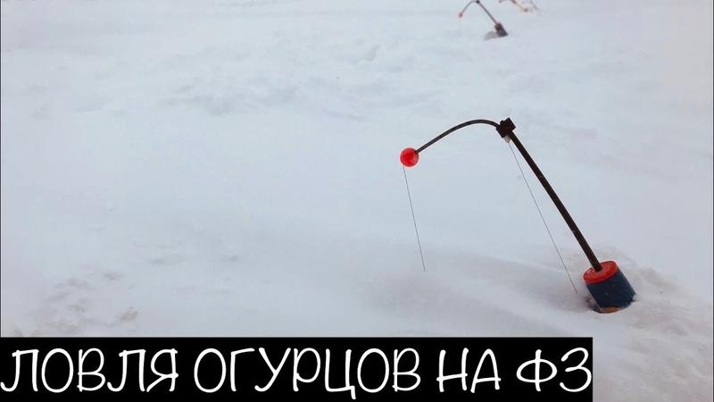 Ловля Корюшки Финский Залив Шпунты