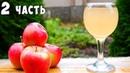ВИНО из ЯБЛОК Яблочное вино ПРОСТОЙ РЕЦЕПТ Часть 2