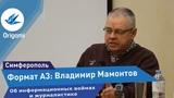 Владимир Мамонтов информационная война Origami Формат А3