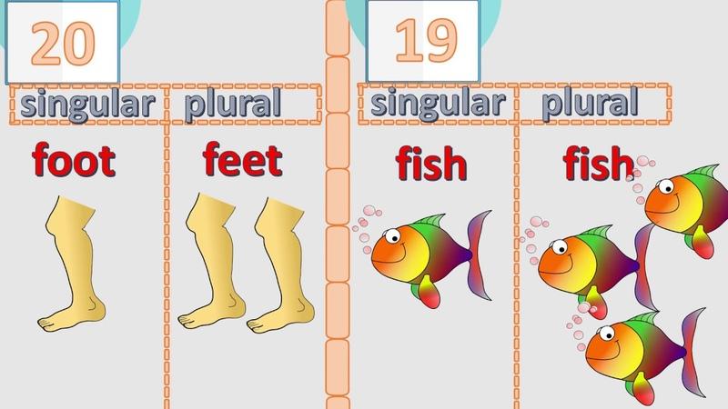 20 irregular plurals of English nouns – check if you know them all English language
