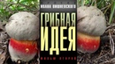 Грибная идея. Проект Ивана Вишневского. Фильм 2-й. Крымские грибы-самоцветы
