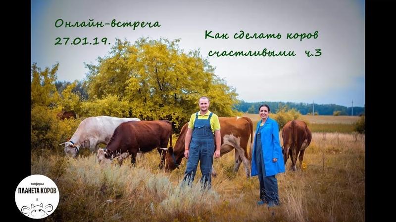 Как сделать коров счастливыми ч.3 Онлайн-встреча 27.01.19.