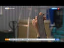 2019 01 15 Композитное направление ТехноСпарка на канале Россия 1