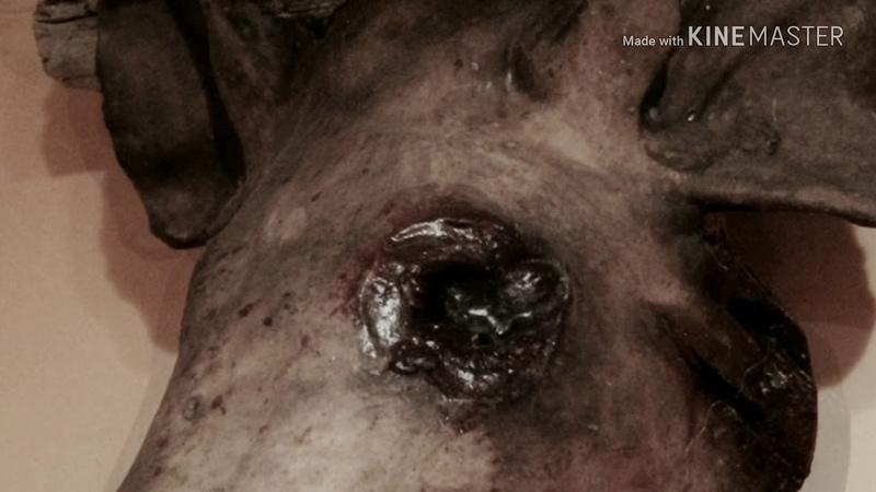 Necrodemie - Pighead (music video)