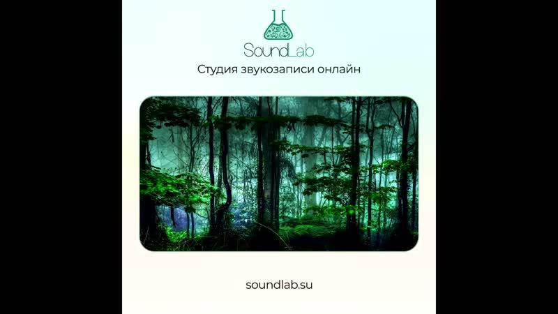 Ерделі Віра - Лісова царівна (минусовка)   SoundLab