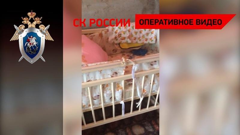 Возбуждено уголовное дело по факту гибели младенца в результате нападения собаки