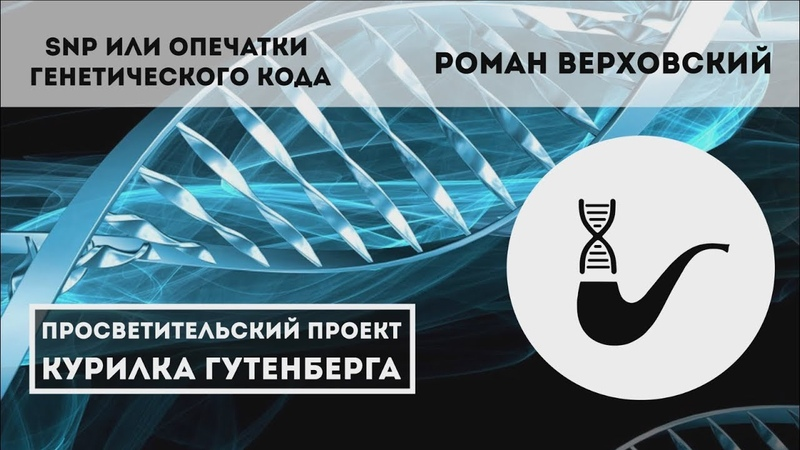 SNP или опечатки генетического кода – Роман Верховский