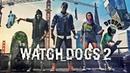 Прохождение Watch Dogs 2 PS4 — Часть 1 Как я попал в DedSec