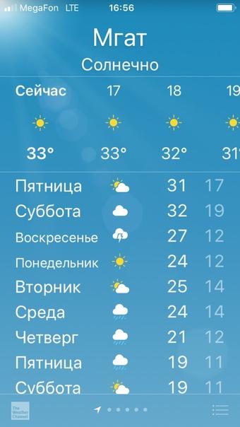 Людмила Баранова: У нас в Апраксина 33 !!!