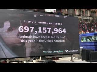 Гигантский счетчик количества убитых животных в реальном времени / animal kill clock by million dollar vegan, uk, feb, 2019