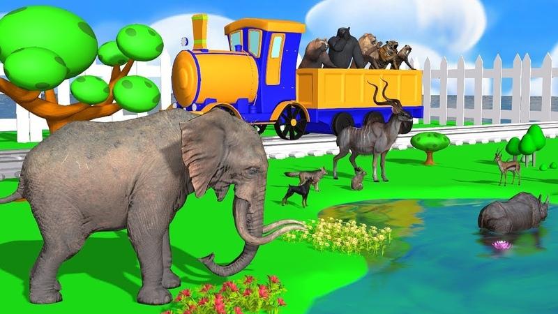 Phim Hoạt Hình 3D Hay Nhất - Tìm Hiểu Các Loài động Dành Cho Trẻ Em